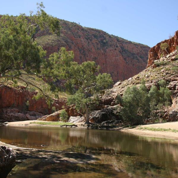 View of Ormiston Gorge